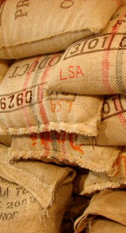 As melhores soluções para armazenamento de café