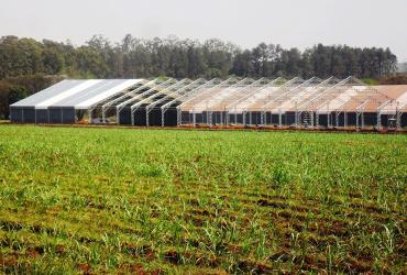 Armazenamento de fertilizantes