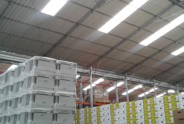 Línea blanca del almacenaje